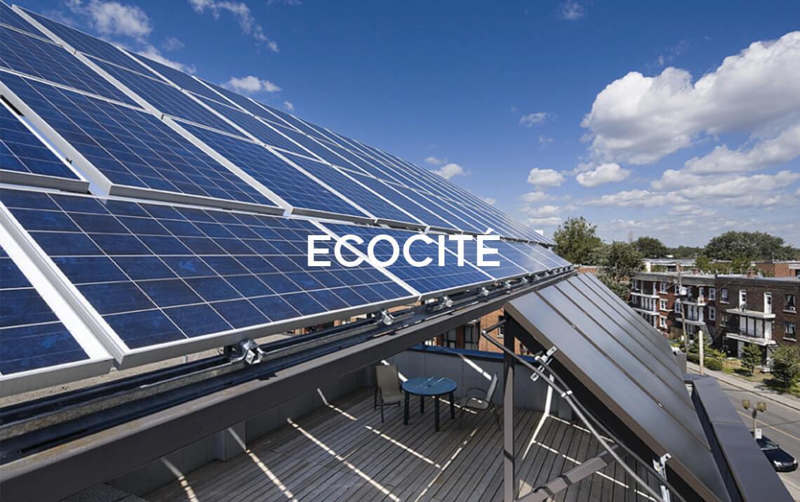 Ecocite